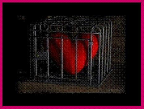 oculto este amor gratis 2