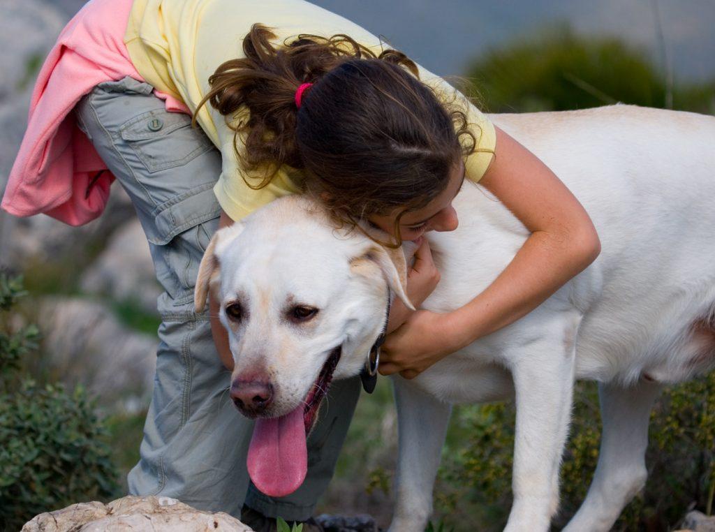 Im genes de cari o con mascotas imagenes de amor - Animales con personas apareandose ...