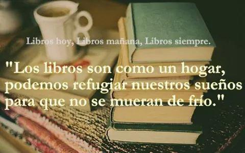los libros son