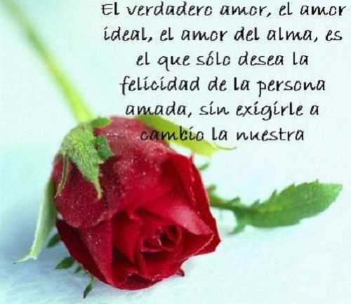 Imagenes para facebook de amor con rosas