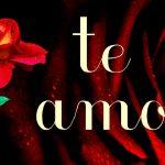 Imagenes con rosas y frases de amor