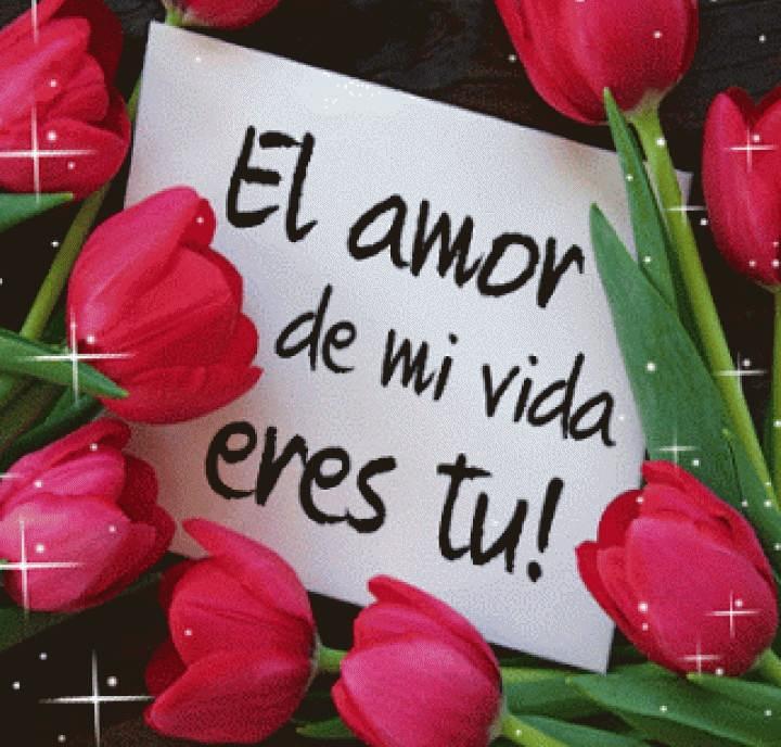 Frases de amor con rosas y corazones