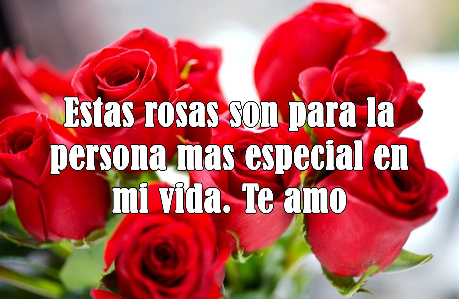 Imagenes con rosas para alguien especial