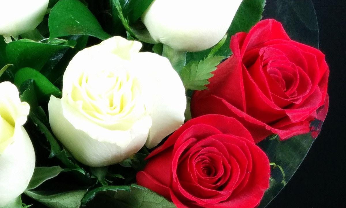 Imagenes con rosas para dedicar