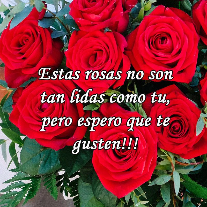 Te regalo esas rosas con frases